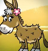 Me & My Donkey